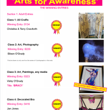 Arts for Awareness Competition Winners 1